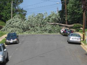 storm damage can affect workplace productivity
